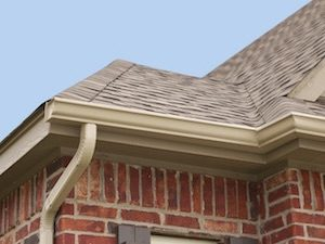 Gutter Cleaning & Installation Services in MA & RI