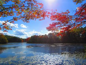 fall day in attleboro